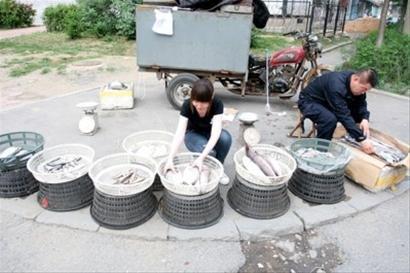 18岁女孩高考完第二天早市出摊儿 卖鱼筹学费