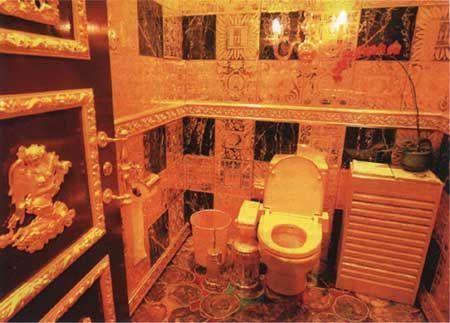 """世界上昂贵的""""金厕所 """":方便一次3000元,仅限3分钟"""