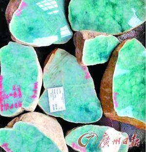 缅甸公盘上,这一标石头底价1.8万欧元,最后成交价近一百万欧元。