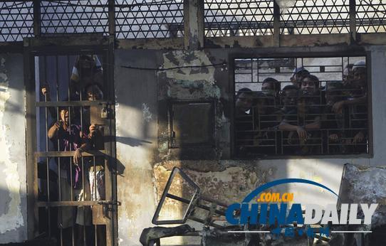 新疆追悼巴楚恐怖案牺牲15名烈士 恐怖分子全 图片 41k 542x346