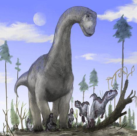 恐龙怎样做爱? 科学家揭秘恐龙性爱姿势【2