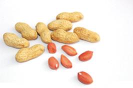 [美食健康]《秋季健康食物6个第一》 -        jswzjl - 不拘一格