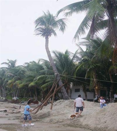三亚十项措施防台风尤特