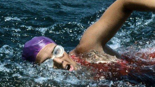 64岁老妇不用防鲨网从古巴游到美国 成史上第一