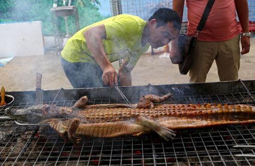 美食节生烤鳄鱼 被称