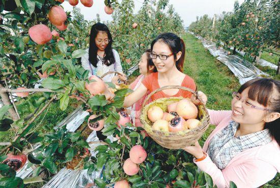 苹果7壁纸古风手绘