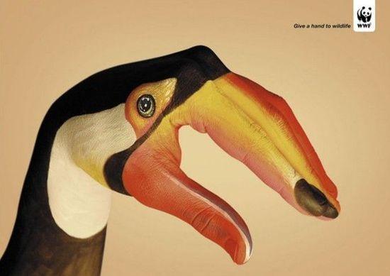 文字 wwf/原标题:WWF公益广告:向野生动物伸出援手