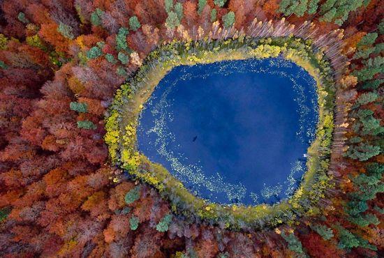 [美景如画]《绚丽多彩的落叶秋景图》 -        jswzjl - 不拘一格