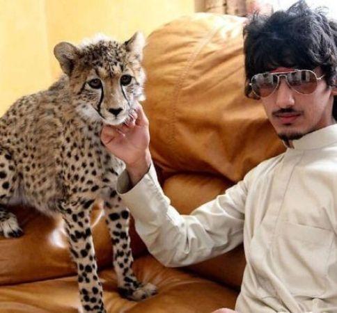 沙特王子蝉联阿拉伯富豪榜首 图揭国外土豪如何败家