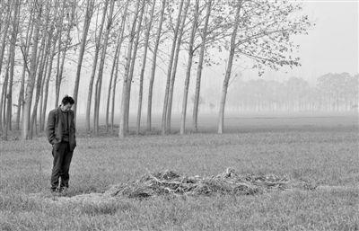 11月21日,高松中站在脑瘫双胞胎儿子坟前。尸检时坟被刨开,复埋时,高松中捡起地头秸秆堆在坟头,这才看起来是座坟。