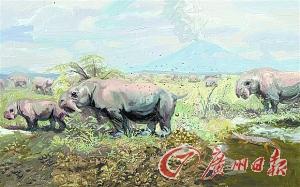 動物在同一地點排泄廢物,可以把其作為領土的標記。