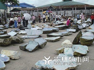 """缅甸翡翠公盘开盘上演""""疯狂的石头""""。"""
