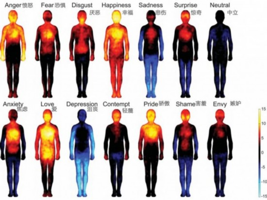 身体情绪热量图