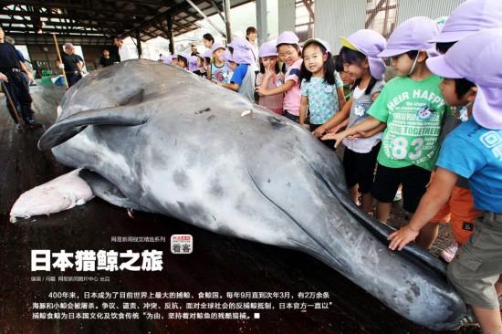日本 河北/400年来,日本已成为了目前世界上最大的捕鲸、食鲸国。