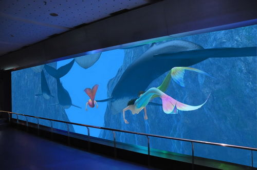 青岛/青岛海底世界推出3D海底情景剧