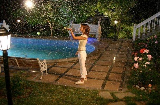 钟小印/杨雪2004年在电视剧《蝴蝶飞飞》中饰演钟小印被观众所熟知。...