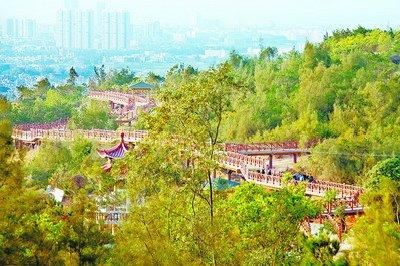 翔安香山步道大年初一起免费对市民开放 春节迎客十万