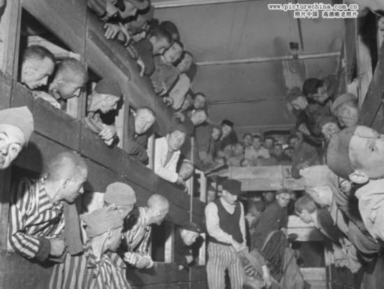 二战纳粹集中营暴行图片