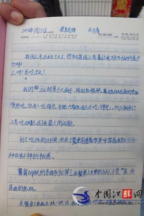 小学生超萌寒假小学曝光:餐桌上最大敌人是爸天津模范日记图片
