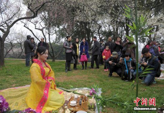 武汉市民着美女展茶艺引组图围观(美女)【5】古装秀爱可图片