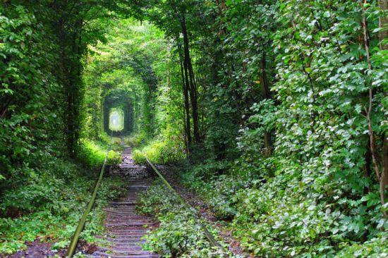 感受自然勾勒的最美轮廓 发现乌克兰爱的隧道 -  ygj2707 - ygj2707的博客