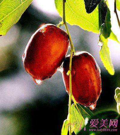 一日三枣终身不老 红枣6种吃法让营养翻倍!