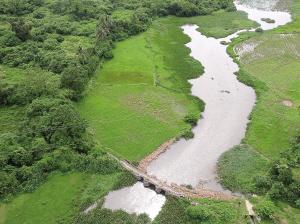 """海口羊山湿地:物种丰富被誉为""""湿地博物馆"""""""