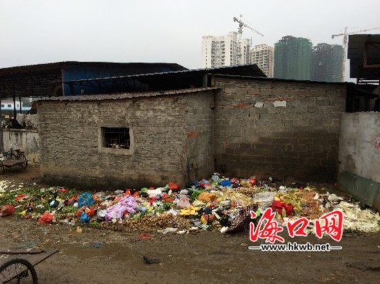 海口南北蔬菜批发市场旁垃圾成堆 令人作呕