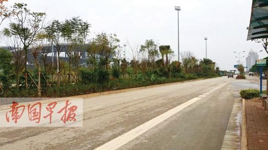 南宁五象大桥8月30日建成通车 不用再挤南宁大桥图片