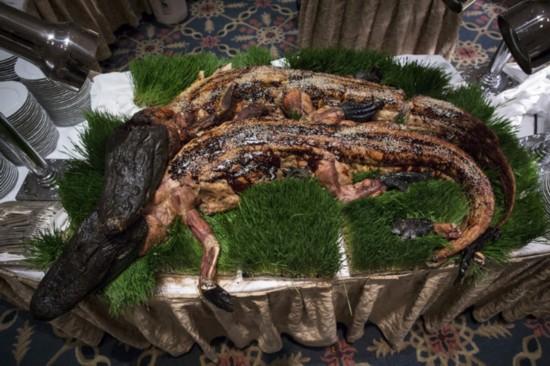 美探險家辦奇葩晚宴:烤全鱷魚烤蟑螂烤鴕鳥