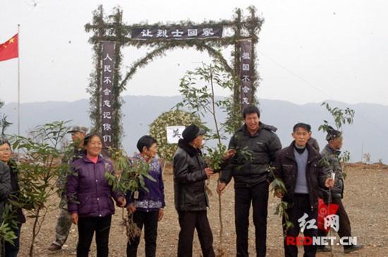 """村民们捐赠1000余株楠木,红豆杉,桂花树等名贵树种,栽植在""""六塔界""""."""