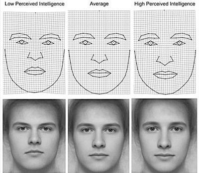 研究发现可通过面相判断男人智商 - ssb23489a - ╭低调的︽华丽つ