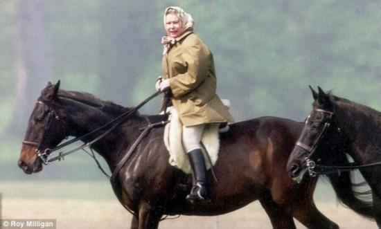 老骥伏枥 英女王88岁高龄仍骑马可爱潇洒图片