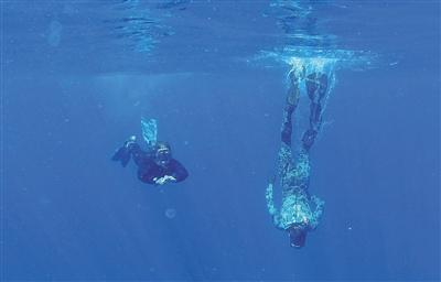 澳方:黑匣子频率或改变 暂不派遣水下机器人