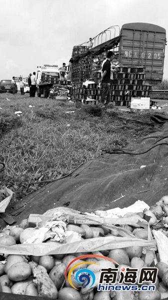 海口绕城高速货车侧翻 芒果损毁损失10多万