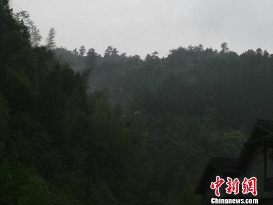 江西省井冈山杜鹃山景区索道12日上午10时左右发生轿箱坠落事件,事件致2人重伤3人轻伤。 王姣 摄