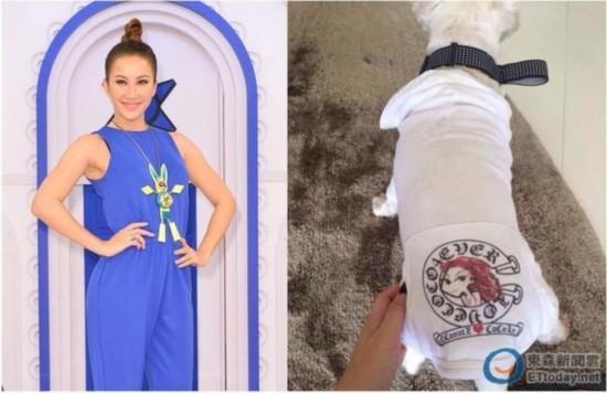 李玟收歌迷T恤竟给狗穿惹议 歌迷泪轰:太过分