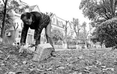 退休公务员小区内8年义务捡狗粪 1天捡二三十斤