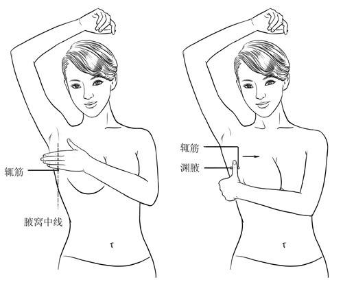 女性要常按身体的八部位--山东频道--人民网
