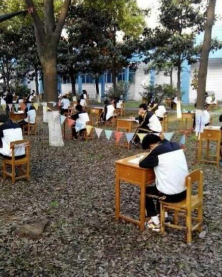 树林 学校/湖北一中学将考场设在树林回应:防学生作弊(图)