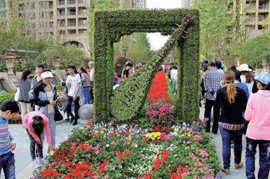 泰州首届花博会开展 5月1日迎3万游客