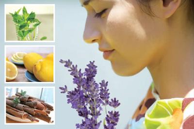 薄荷减轻头痛茉莉有助睡眠 8种香味有益健康