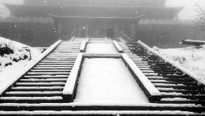"""北京房山""""五月飞雪"""" 持续20多个小时"""