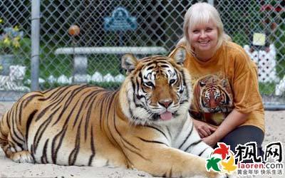 女子养老虎当宠物像母亲孩子般经童装店logo 图片常亲吻拥抱