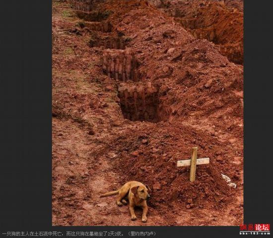史上最催淚的40張照片 你能堅持看到第幾張?