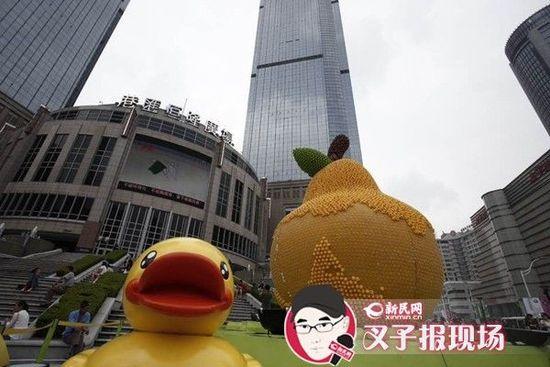 上海一万五千只小黄鸭展览一周被拔走一半