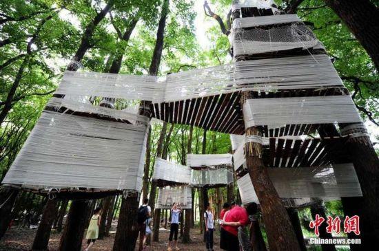 """树荫做""""屋顶"""",尼龙绳编成""""墙"""",粗壮的大树做""""柱子""""."""