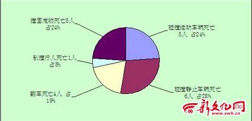 路交通事故死亡人数形态统计图-吉林省交管部门分析6月份交通事故