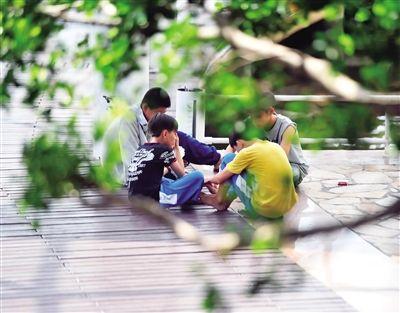 三亚河边:树荫下避暑