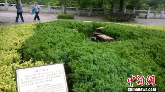 """被偷的""""螭首散水""""上面没有任何石雕只剩金属底座 唐韵 摄"""
